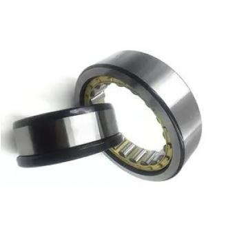 China High Quality Cylindrical Roller Bearing N1030k Nn3030k