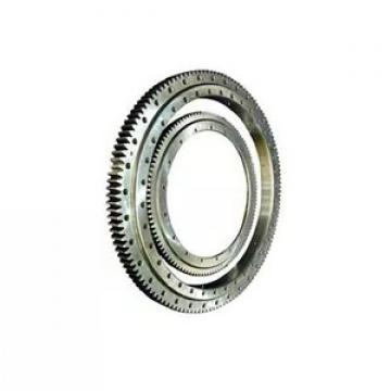 SKF Germany P6 Double Row Cylindrical Roller Bearing Nu Nj310 Nj311 Nj312 313 314 Nj315 Nj316 Nj317 Nj318