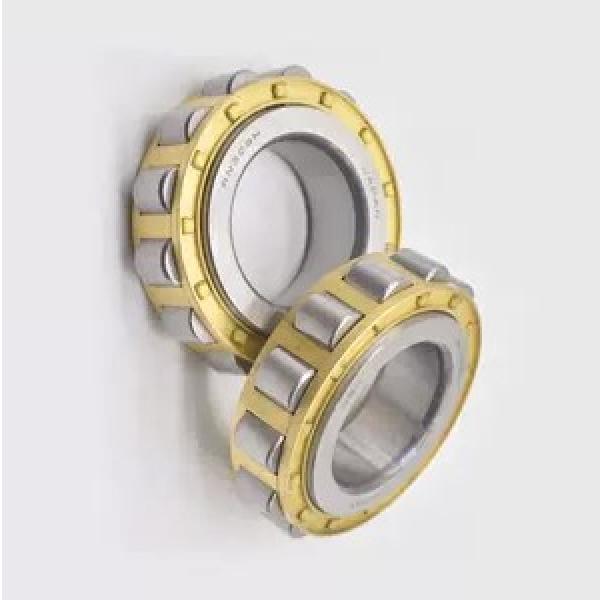Nj207em Bearing Nj 208 Bearing or Brass Cage Bearing #1 image