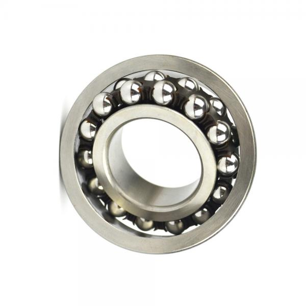 Ceramic Bearing with High Speed and Fantastic Price 606 626 686 696 Full Ceramic Bearing for Fidget Spinner #1 image
